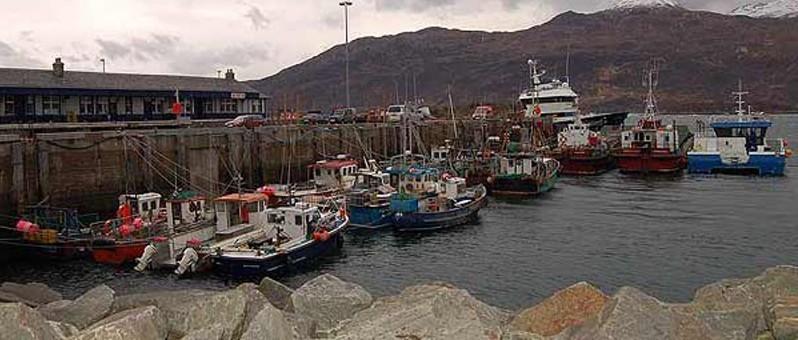 fishery pier & boats